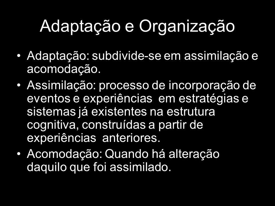 Adaptação e Organização