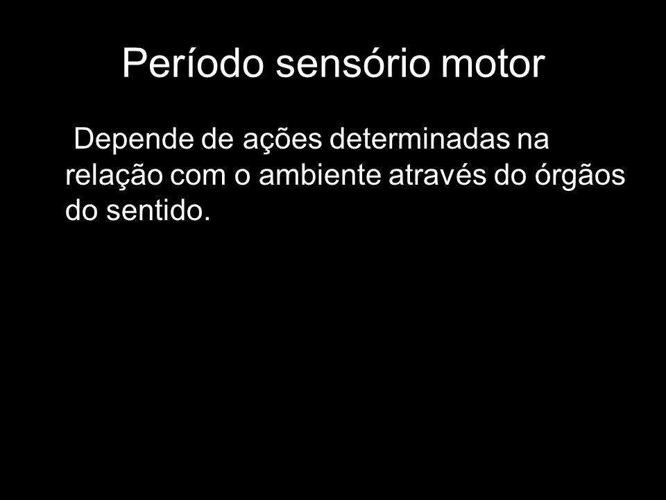 Período sensório motor