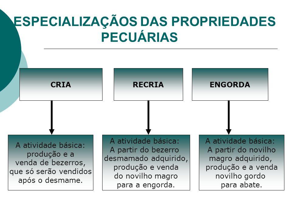ESPECIALIZAÇÃOS DAS PROPRIEDADES PECUÁRIAS