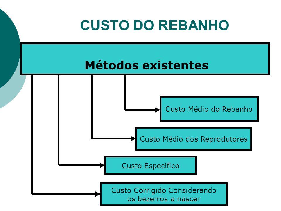 CUSTO DO REBANHO Métodos existentes Custo Médio do Rebanho