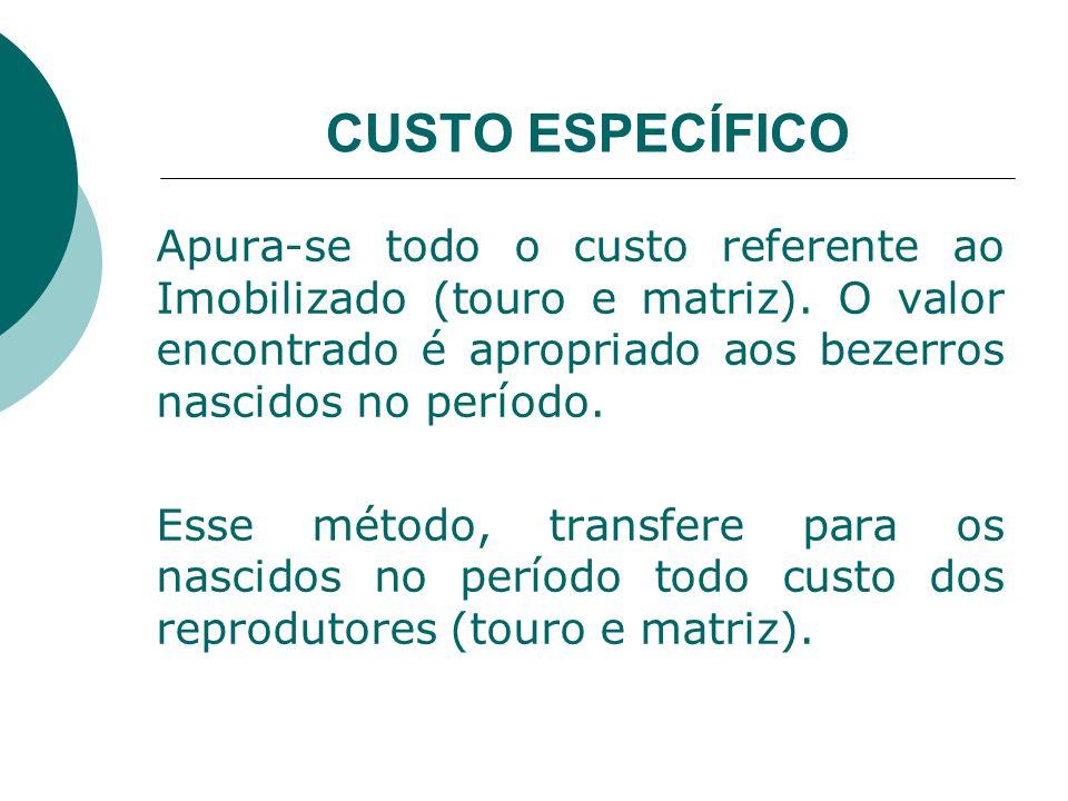 CUSTO ESPECÍFICO Apura-se todo o custo referente ao Imobilizado (touro e matriz). O valor encontrado é apropriado aos bezerros nascidos no período.