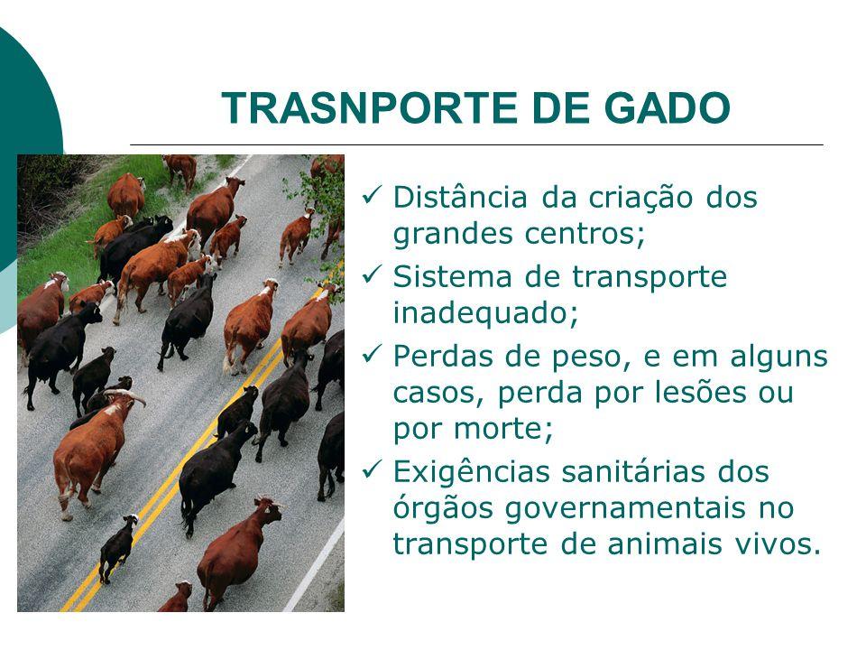 TRASNPORTE DE GADO Distância da criação dos grandes centros;