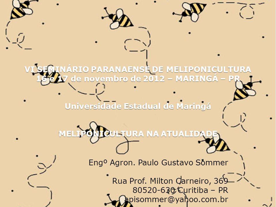 VI SEMINÁRIO PARANAENSE DE MELIPONICULTURA 16 e 17 de novembro de 2012 – MARINGÁ – PR Universidade Estadual de Maringá MELIPONICULTURA NA ATUALIDADE