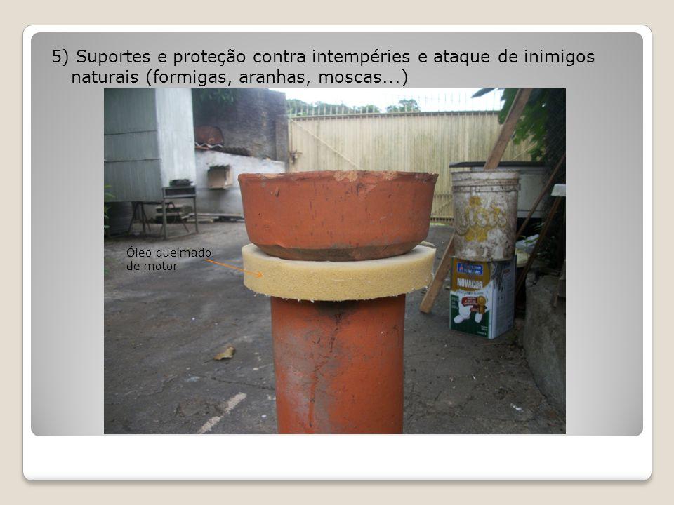 5) Suportes e proteção contra intempéries e ataque de inimigos naturais (formigas, aranhas, moscas...)