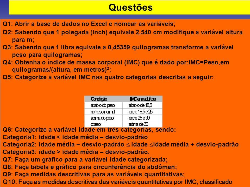 Questões Q1: Abrir a base de dados no Excel e nomear as variáveis;