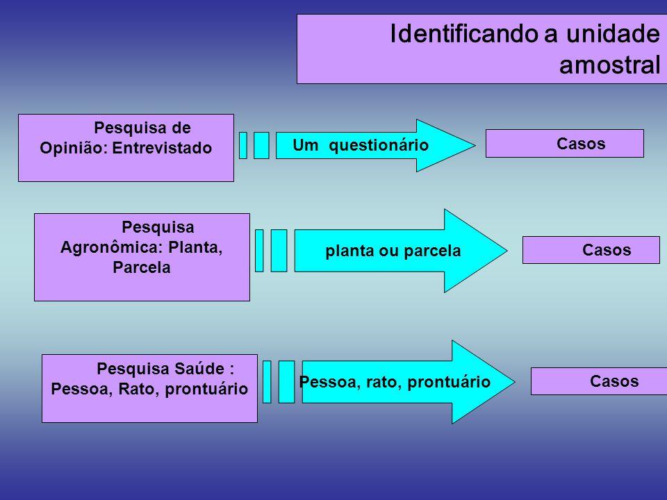 Identificando a unidade amostral