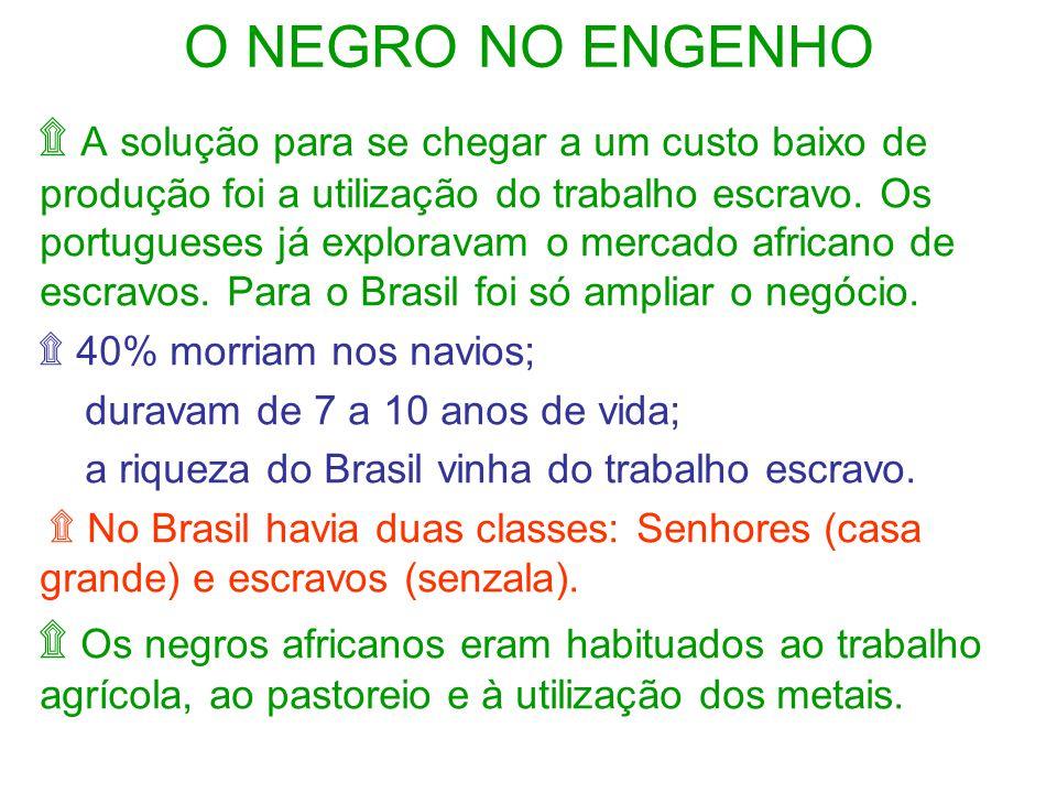 O NEGRO NO ENGENHO