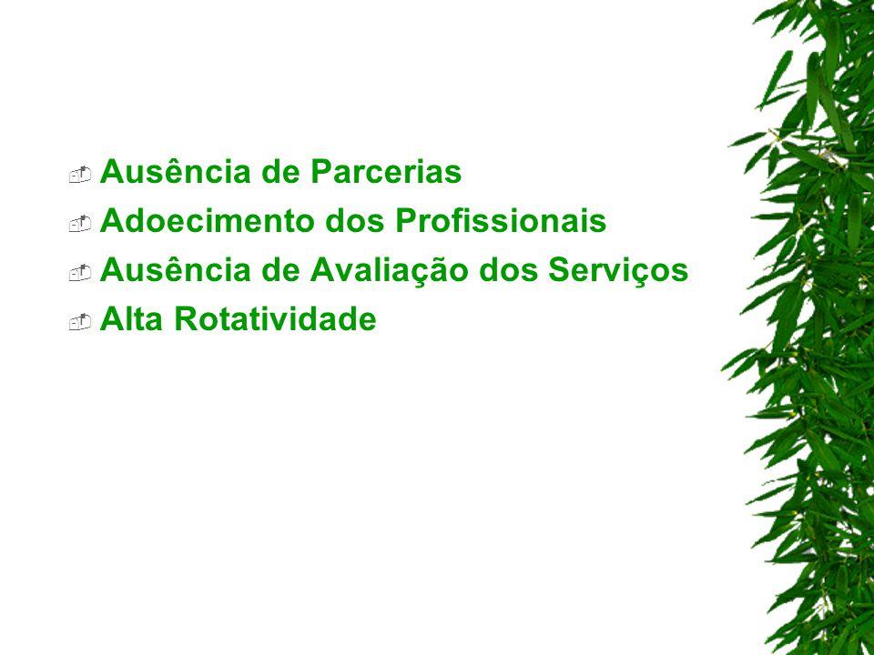 Ausência de Parcerias Adoecimento dos Profissionais.