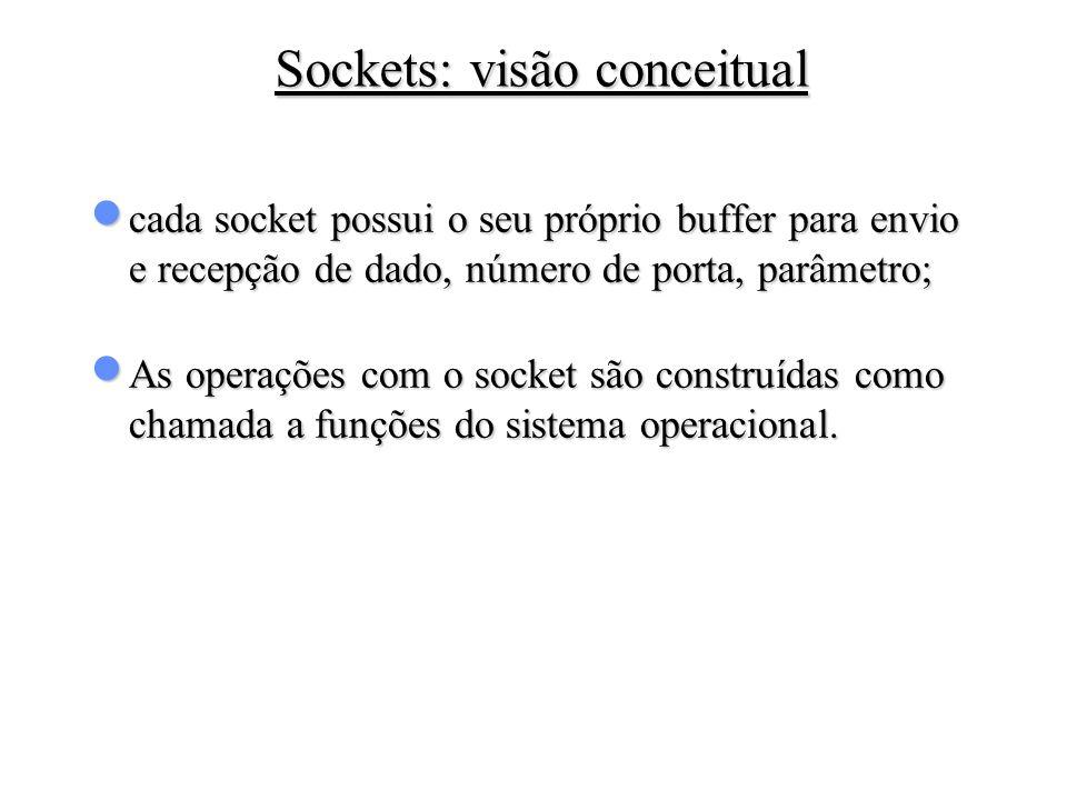 Sockets: visão conceitual