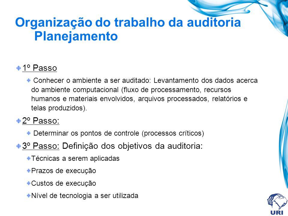 Organização do trabalho da auditoria Planejamento
