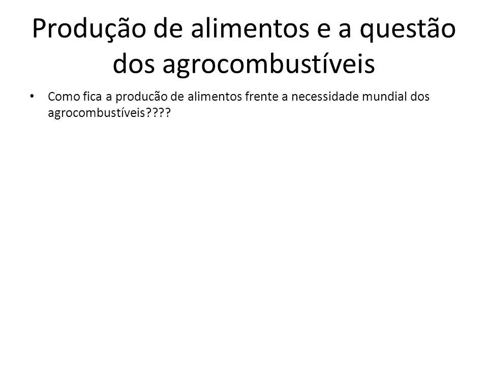 Produção de alimentos e a questão dos agrocombustíveis