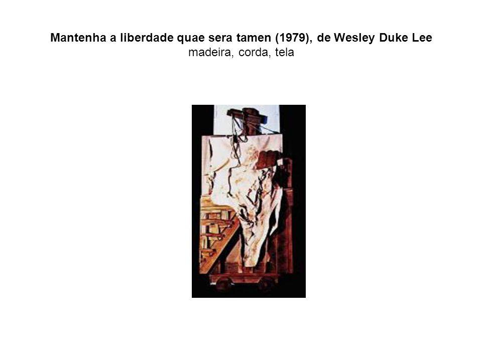 Mantenha a liberdade quae sera tamen (1979), de Wesley Duke Lee madeira, corda, tela