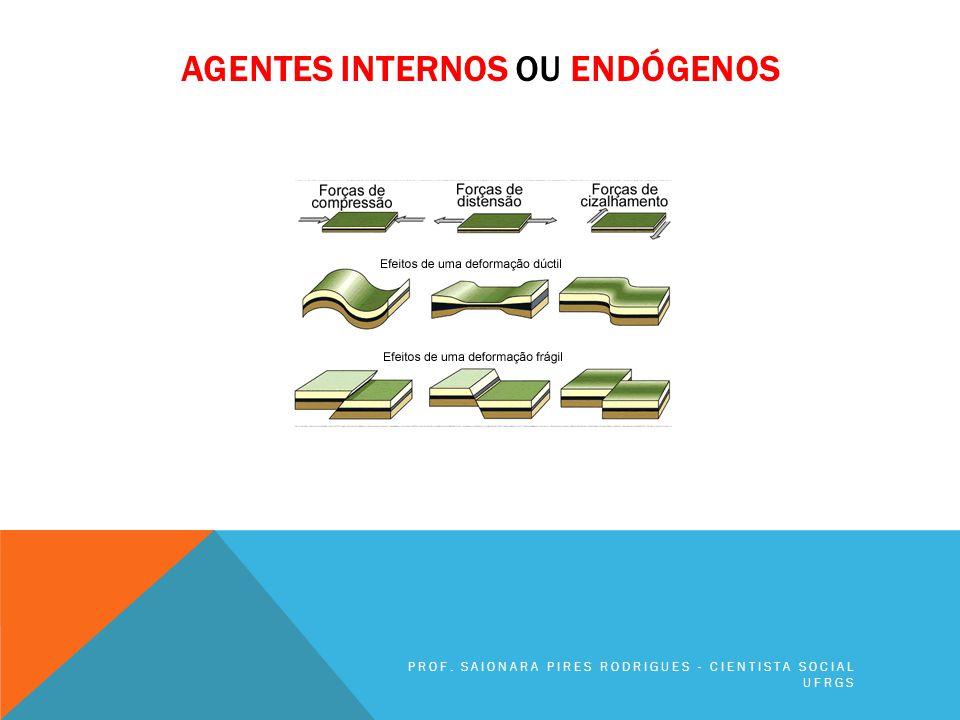 Agentes internos ou endógenos