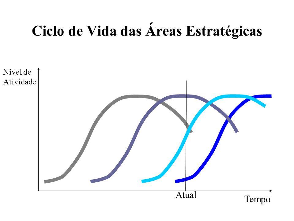 Ciclo de Vida das Áreas Estratégicas