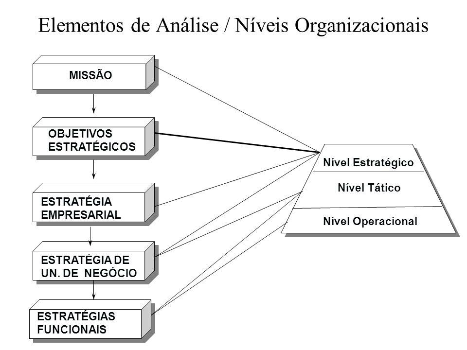 Elementos de Análise / Níveis Organizacionais