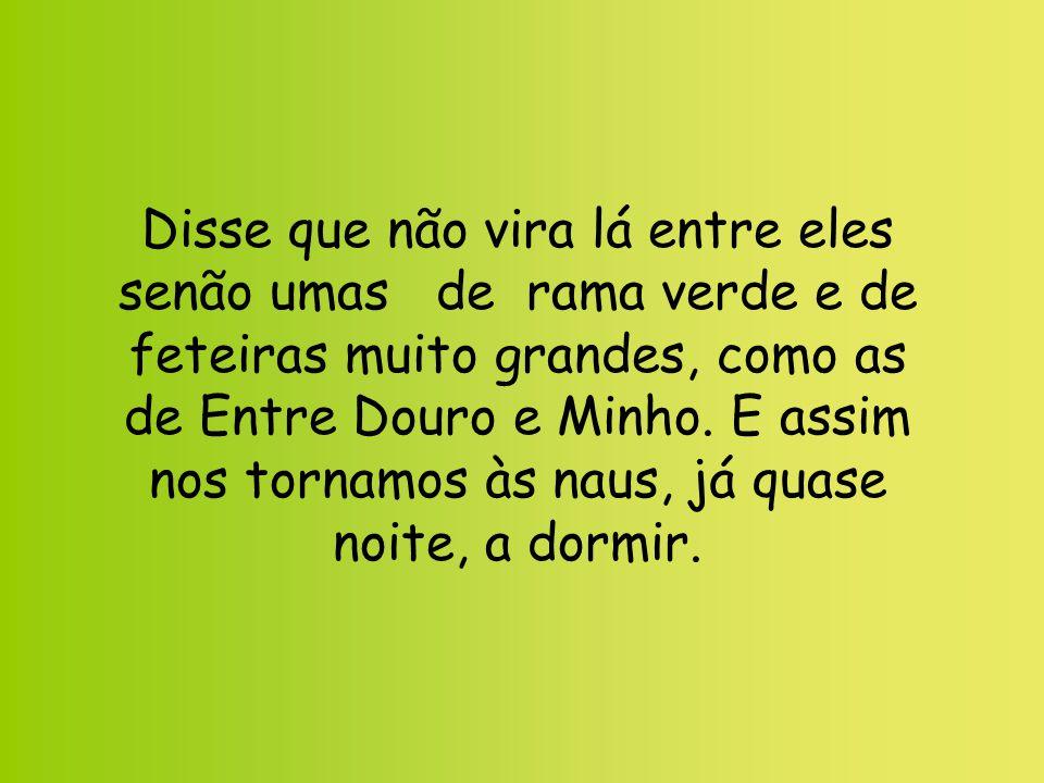 Disse que não vira lá entre eles senão umas de rama verde e de feteiras muito grandes, como as de Entre Douro e Minho.