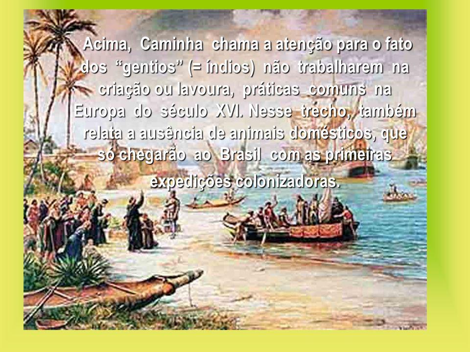 Acima, Caminha chama a atenção para o fato dos gentios (= índios) não trabalharem na criação ou lavoura, práticas comuns na Europa do século XVI.