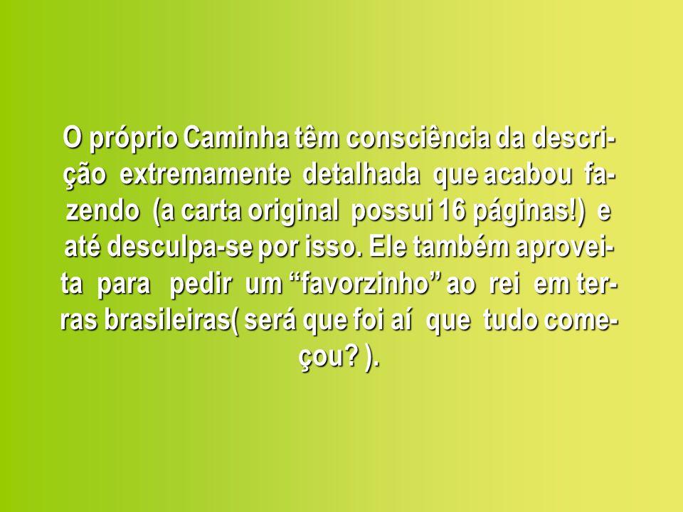 O próprio Caminha têm consciência da descri-ção extremamente detalhada que acabou fa-zendo (a carta original possui 16 páginas!) e até desculpa-se por isso.