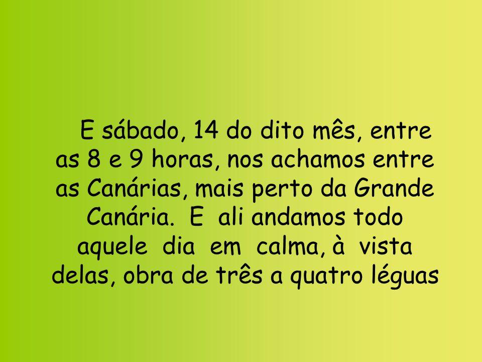 E sábado, 14 do dito mês, entre as 8 e 9 horas, nos achamos entre as Canárias, mais perto da Grande Canária.