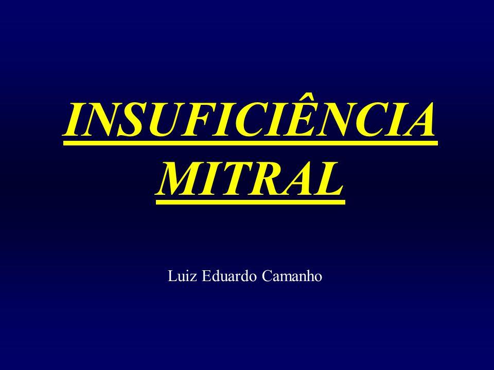 INSUFICIÊNCIA MITRAL Luiz Eduardo Camanho