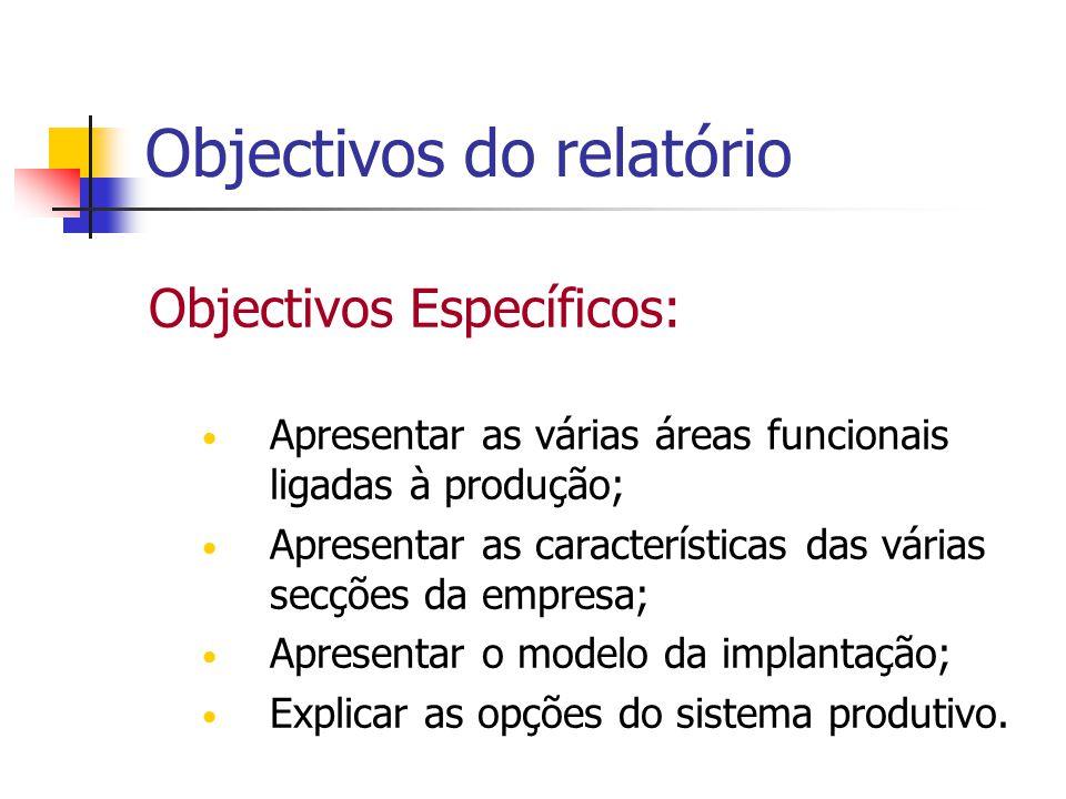 Objectivos do relatório