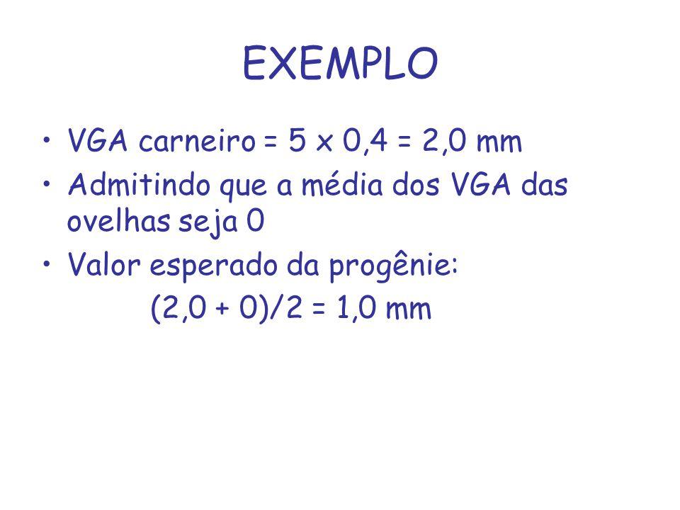 EXEMPLO VGA carneiro = 5 x 0,4 = 2,0 mm