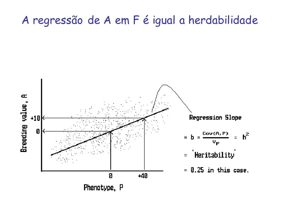 A regressão de A em F é igual a herdabilidade