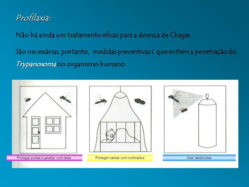 Profilaxia: Não há ainda um tratamento eficaz para a doença de Chagas.