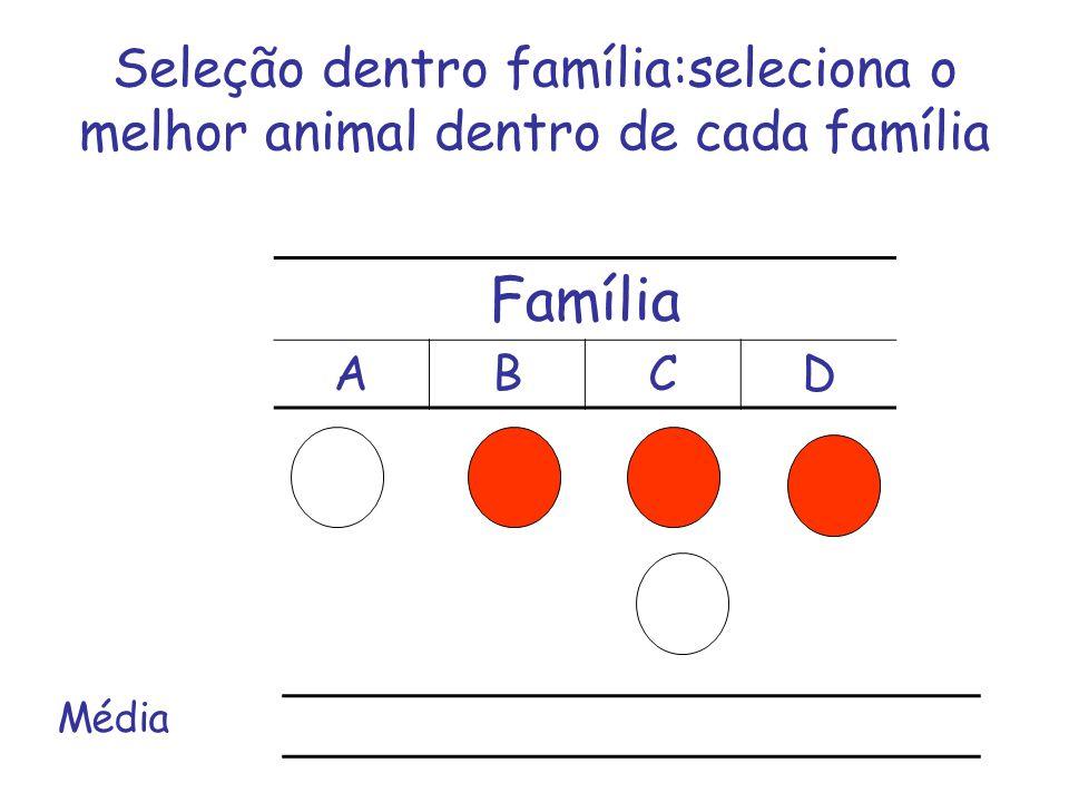 Seleção dentro família:seleciona o melhor animal dentro de cada família