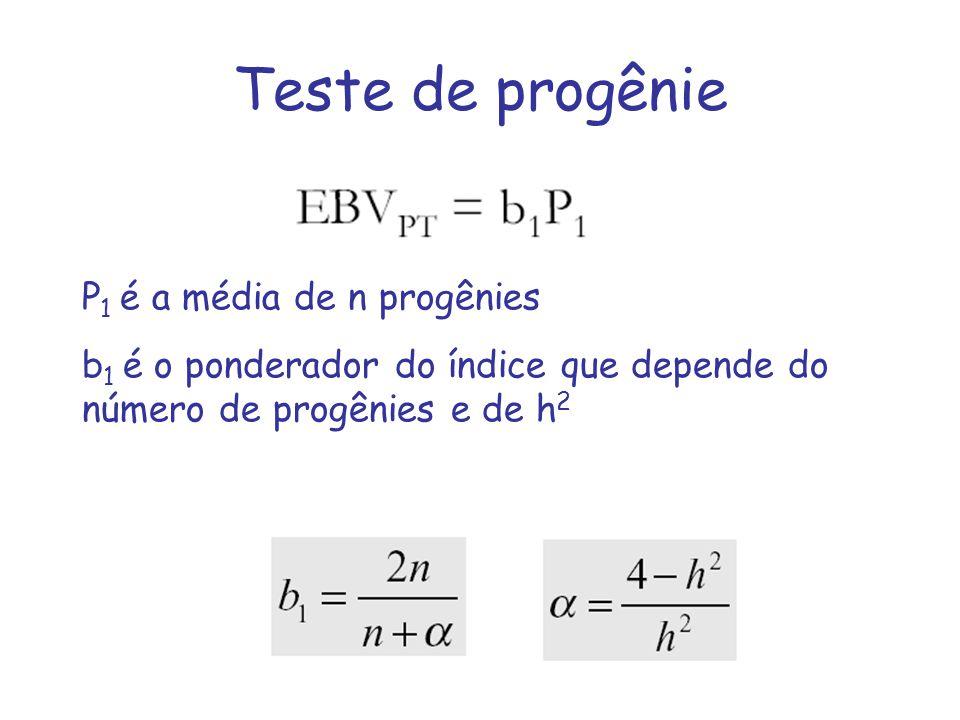 Teste de progênie P1 é a média de n progênies