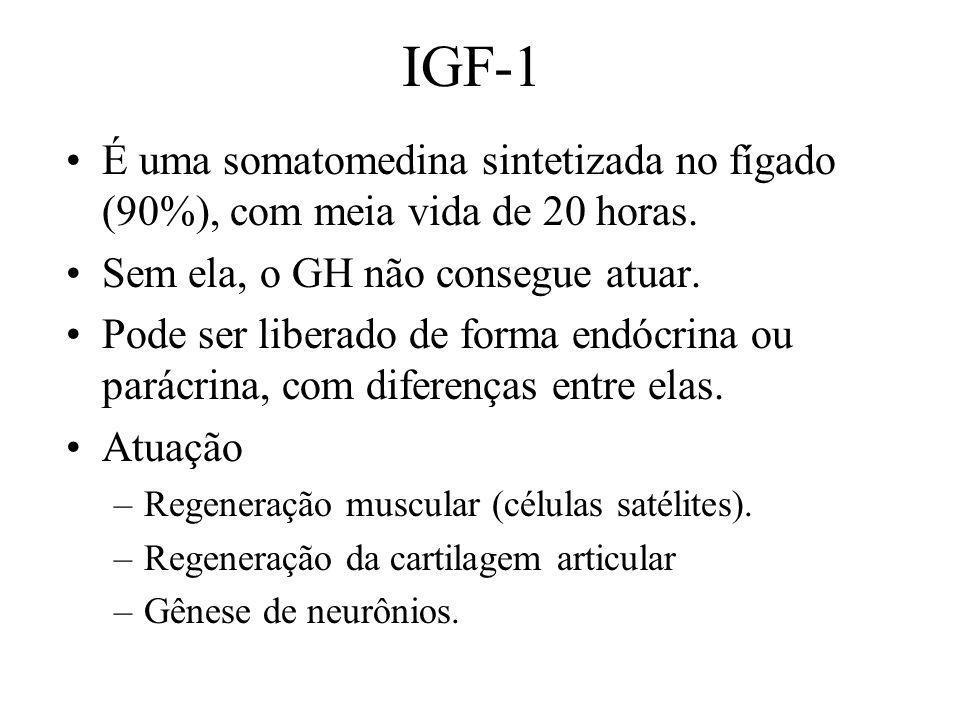 IGF-1 É uma somatomedina sintetizada no fígado (90%), com meia vida de 20 horas. Sem ela, o GH não consegue atuar.