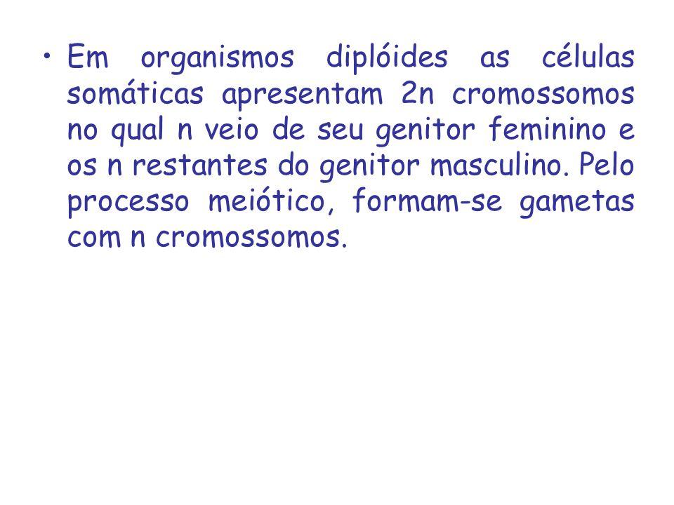 Em organismos diplóides as células somáticas apresentam 2n cromossomos no qual n veio de seu genitor feminino e os n restantes do genitor masculino.