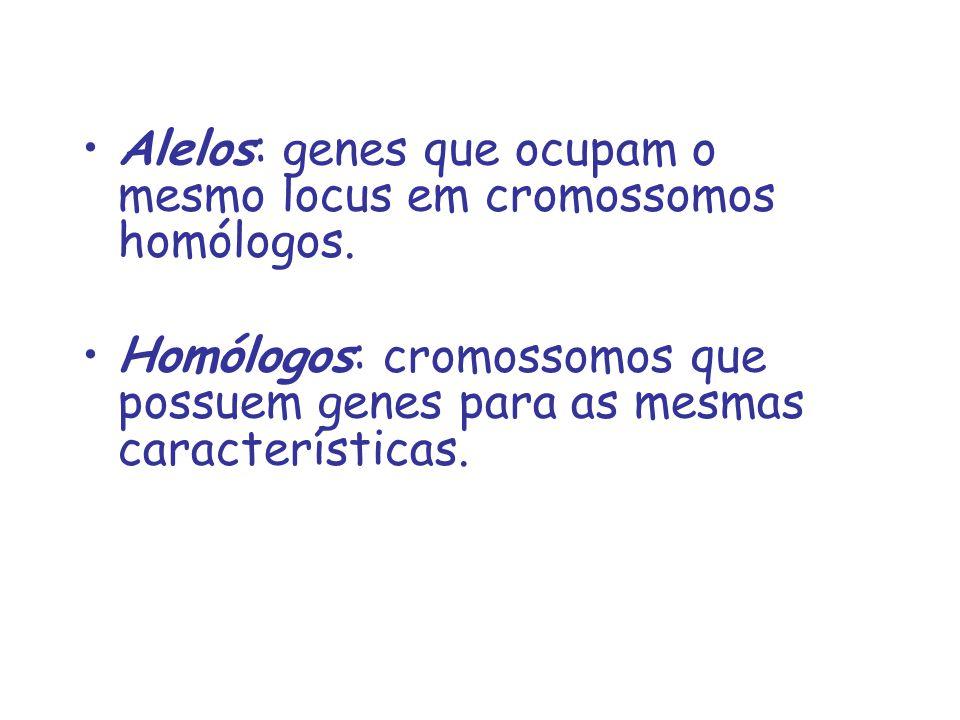 Alelos: genes que ocupam o mesmo locus em cromossomos homólogos.