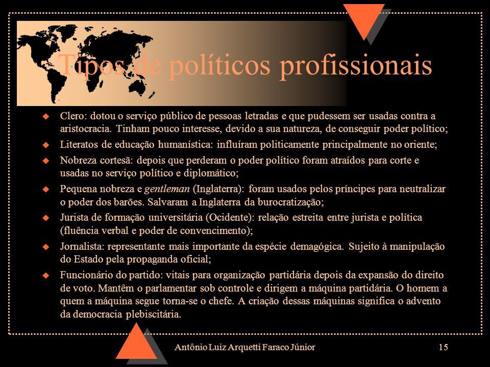 Tipos de políticos profissionais