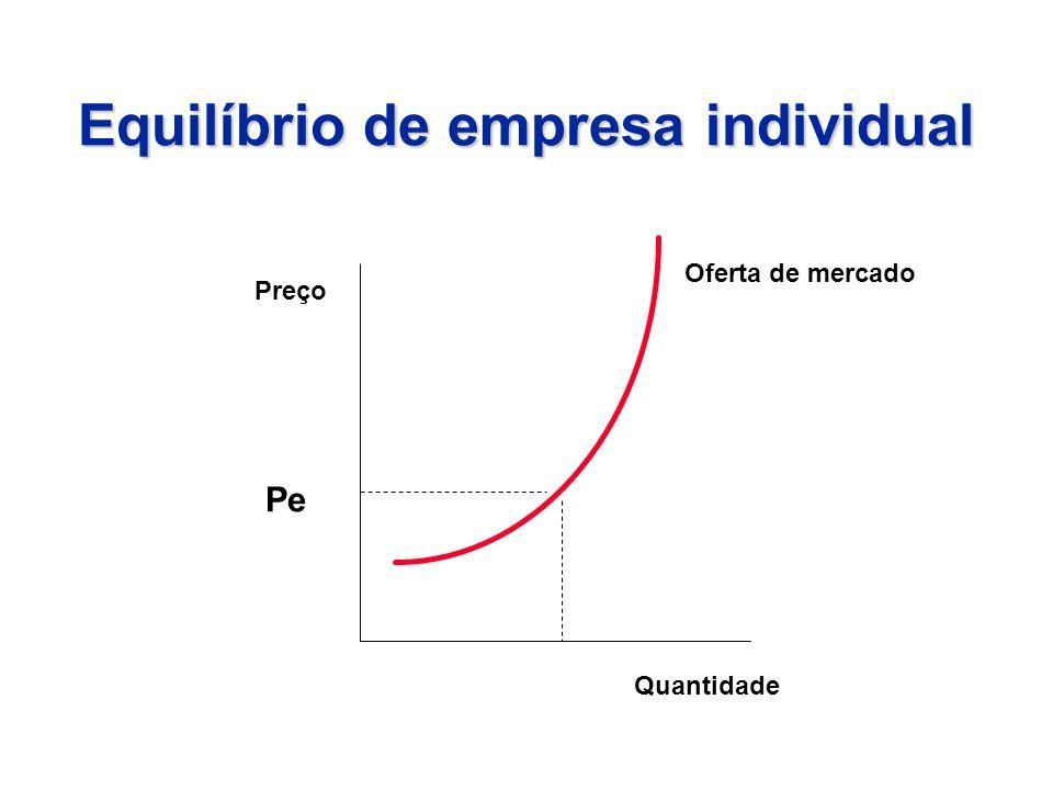 Equilíbrio de empresa individual