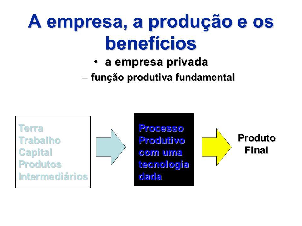 A empresa, a produção e os benefícios
