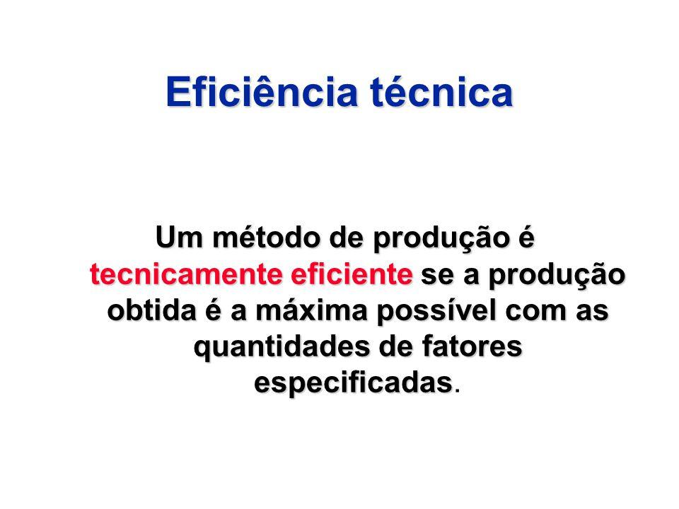 Eficiência técnica