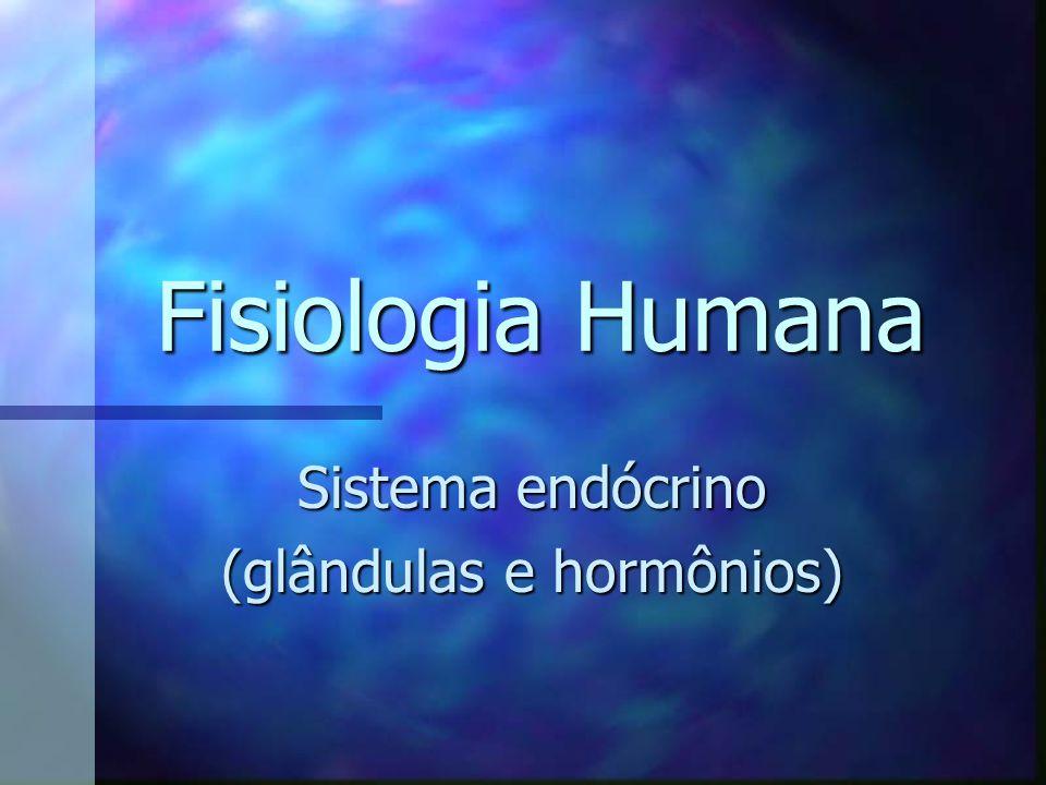 Sistema endócrino (glândulas e hormônios)
