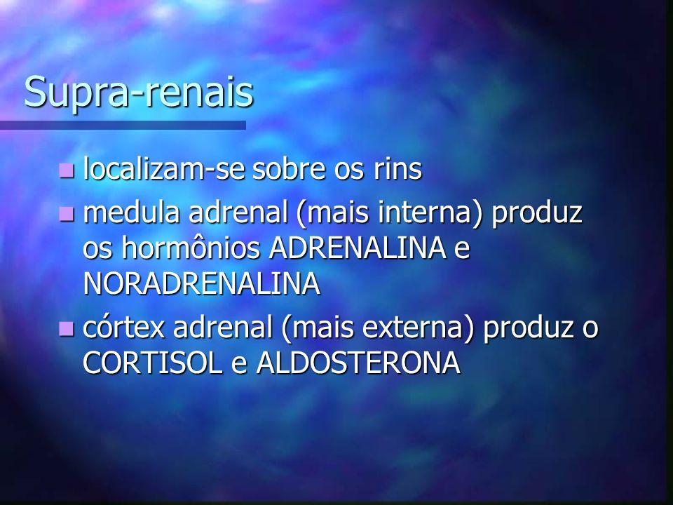 Supra-renais localizam-se sobre os rins