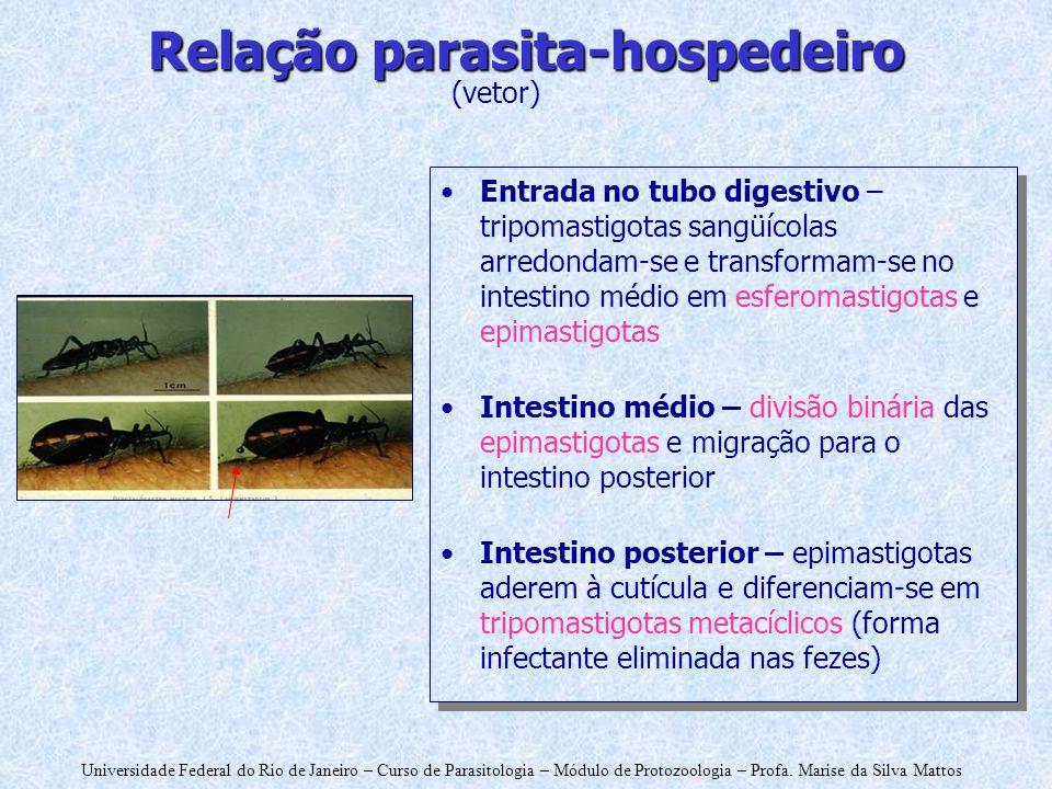 Relação parasita-hospedeiro
