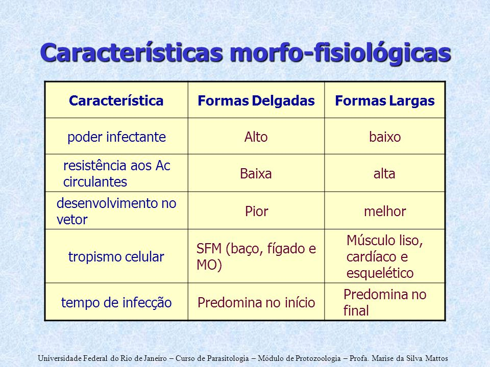 Características morfo-fisiológicas