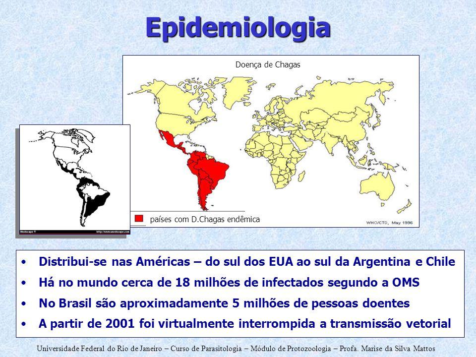 Epidemiologia países com D.Chagas endêmica. Doença de Chagas. Distribui-se nas Américas – do sul dos EUA ao sul da Argentina e Chile.