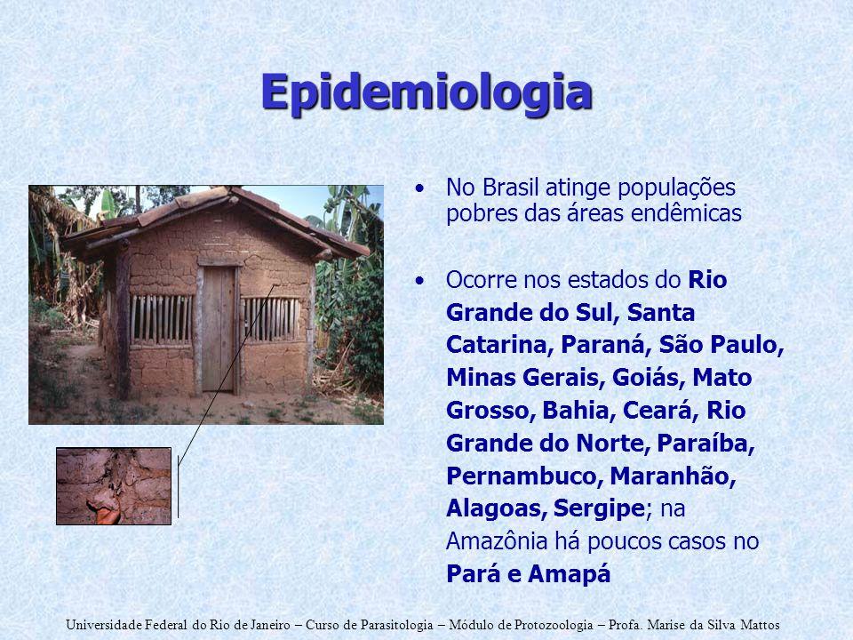 Epidemiologia No Brasil atinge populações pobres das áreas endêmicas