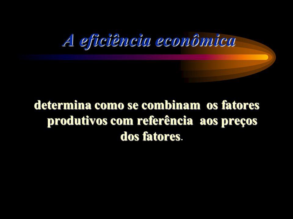 A eficiência econômica