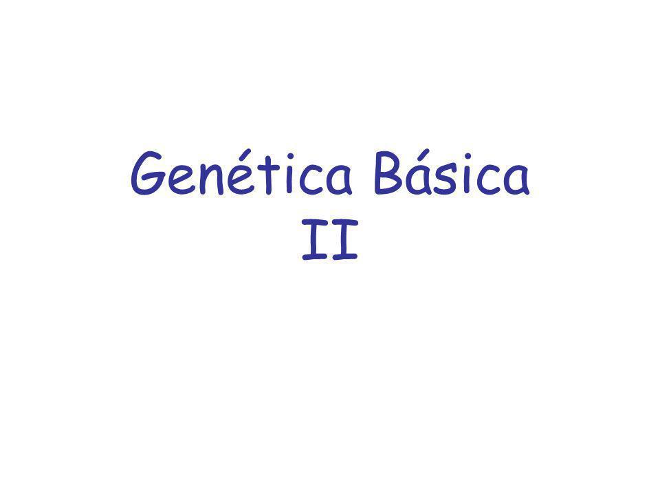 Genética Básica II