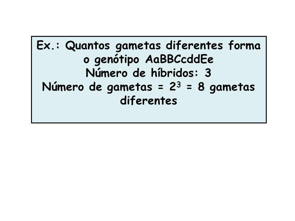 Ex.: Quantos gametas diferentes forma o genótipo AaBBCcddEe