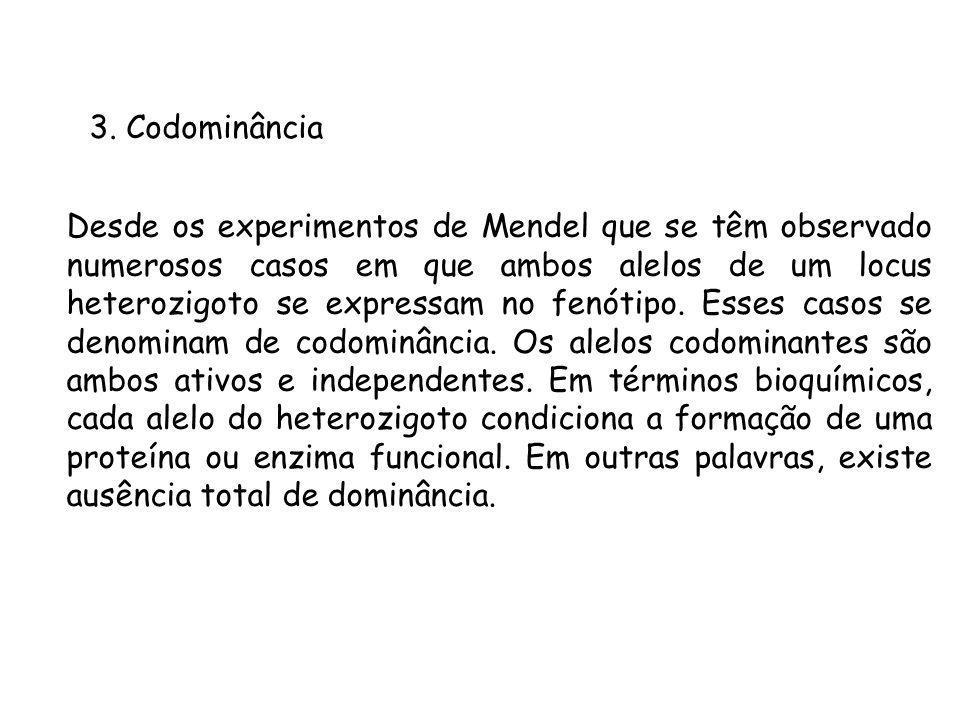 3. Codominância