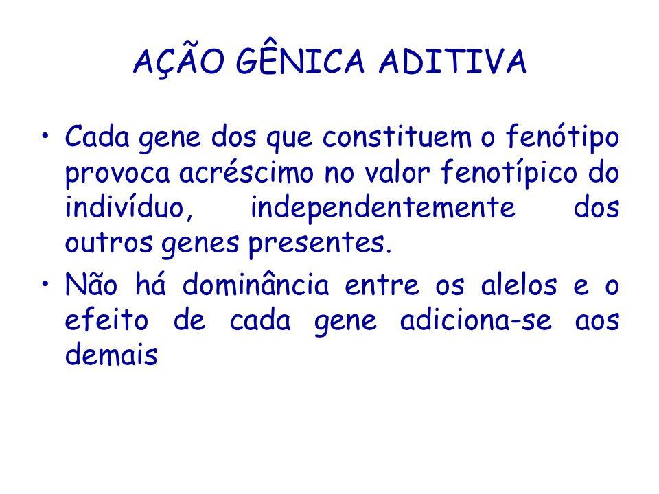 AÇÃO GÊNICA ADITIVA