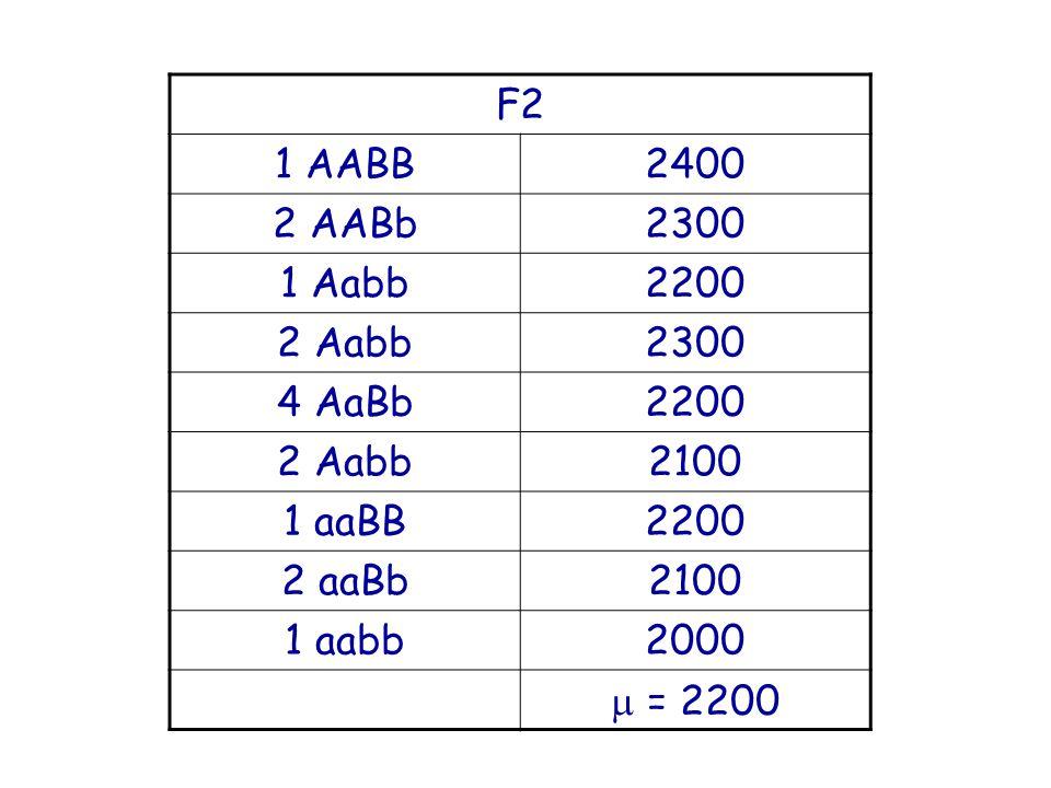 F2 1 AABB 2400 2 AABb 2300 1 Aabb 2200 2 Aabb 4 AaBb 2100 1 aaBB 2 aaBb 1 aabb 2000  = 2200