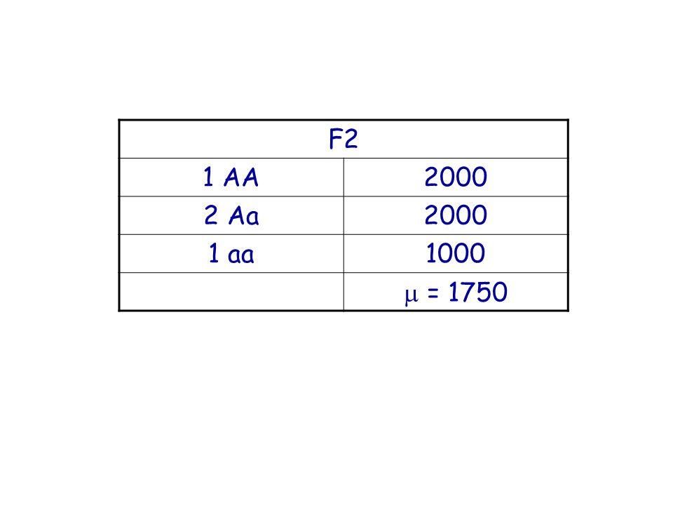 F2 1 AA 2000 2 Aa 1 aa 1000  = 1750